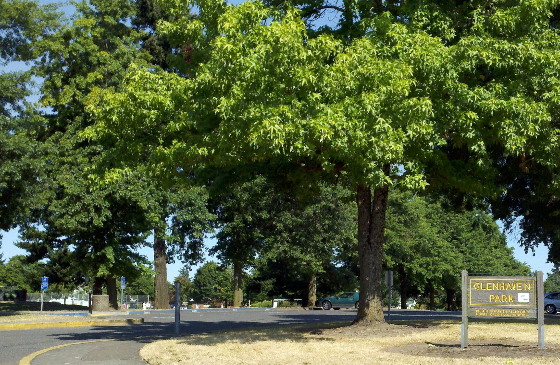 Madison South neighborhood portland oregon